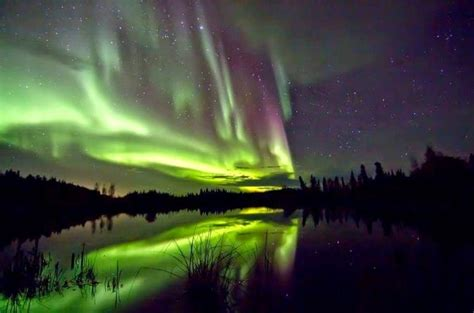 northern lights tours canada northern lights tour from yellowknife lonely planet