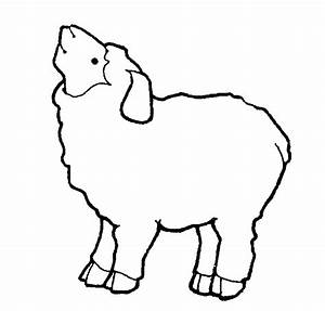 White Sheep Clipart - Cliparts.co
