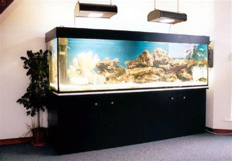 aquarium 500l pas cher installation d 233 coration aquarium eau douce pas cher
