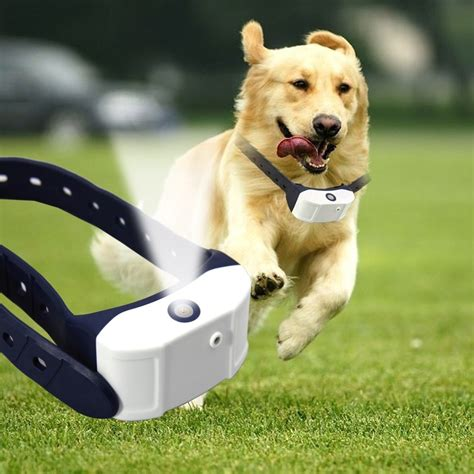 rechargeable spray dog training collar pet citronella bark