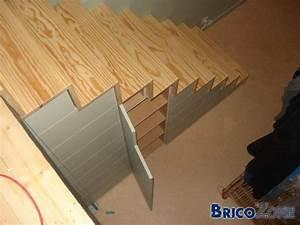 Fabriquer Un Lit Mezzanine : escalier vers lit en mezzanine ~ Dode.kayakingforconservation.com Idées de Décoration