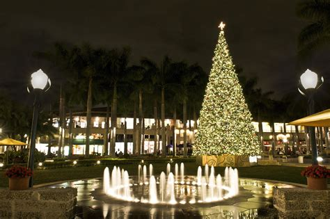 where to see christmas lights in miami and fort lauderdale