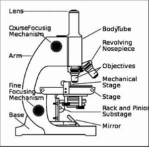 Parts Of A Microscope Worksheet
