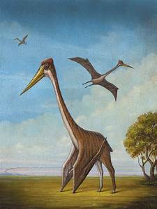 The Miracle of Flight | The Alcalde  Quetzalcoatlus
