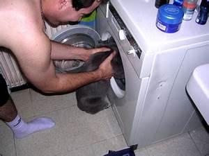 Boule Anti Poil Machine A Laver : le on 1 laver le chat en machine pas trop les boules ~ Melissatoandfro.com Idées de Décoration