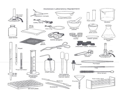 laboratory equipment worksheet worksheets for all