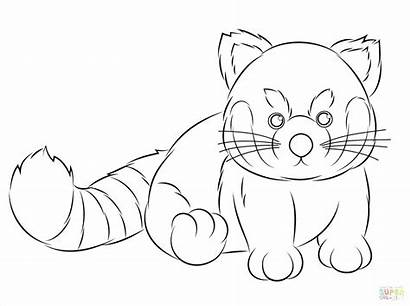 Panda Coloring Pages Adults Webkinz Drawing Printable