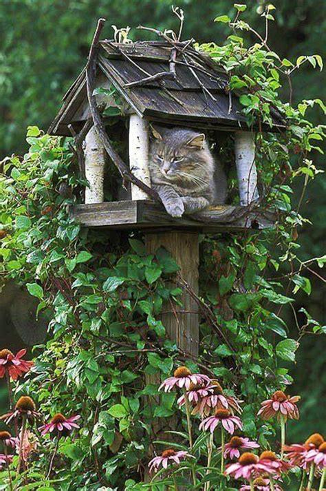 Gartendeko Katze Holz by Interieur Und Exterieurideen Mit Deko Vogelhaus