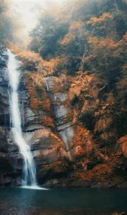 Waterfall HD Wallpapers and Background Images – Static ...