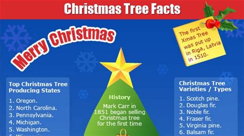 Christmas Tree Facts (infographic) Makemoneyinlifecom