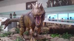 Dinossauros - Parque Sabina  Santo Andr U00e9 - Sp