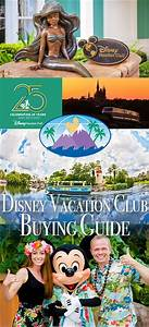 724 best images about Ways to Save Money at Disney World ...