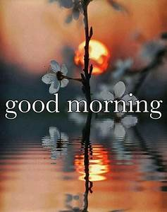 Good Morning Pictures, Photos, and Images for Facebook ...