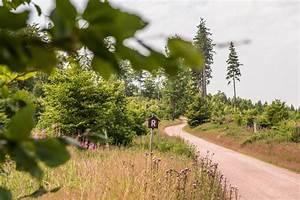 Ferienhaus Im Thüringer Wald : der rennsteig im th ringer wald ferienhaus lichtung ~ Lizthompson.info Haus und Dekorationen