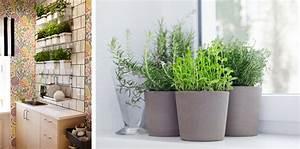 Kräutertöpfe In Der Küche : alte k che aufpeppen 7 tipps um die k che zu versch nern ~ Michelbontemps.com Haus und Dekorationen