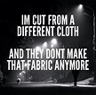 I'm cut from a different cloth, and they don't make that ...