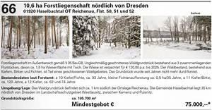 Grunderwerbsteuer Brandenburg 2016 : auktionshaus karhausen viermal j hrlich wald auktion wald ~ Frokenaadalensverden.com Haus und Dekorationen