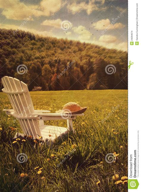adirondack chair   field  grass stock images image