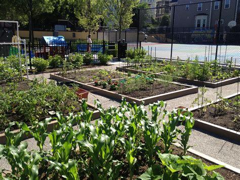 Urban Gardening : Somerville Loves Urban Gardening!