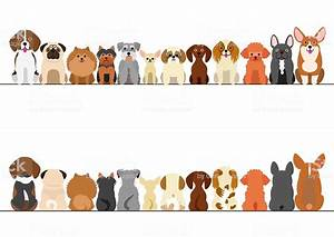 Small Dogs Border Set Front View And Rear View Stock ...