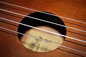 The 8 Best Ukulele Strings 2019  Full Buyers Guide