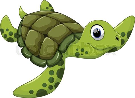 Pencil And In Color Turtle Clipart