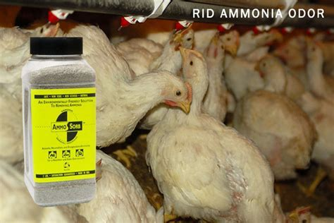 AmmoSorb? Eco Animal & Poultry Ammonia Elimination