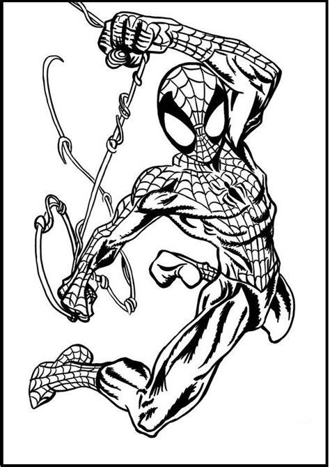 images  spiderman  pinterest  amazing