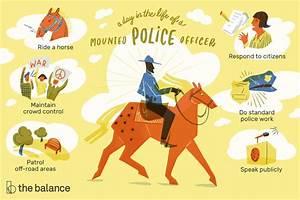 Animal Control Officer Job Description Mounted Police Officer Job Description Salary Skills More