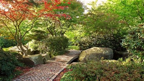 full hd wallpaper garden stone tree path bush desktop