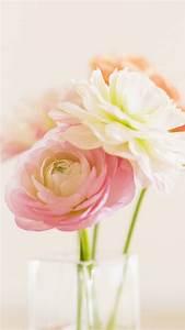 Elegant Beautiful Bloom Glass Vase iPhone 6 wallpaper ...