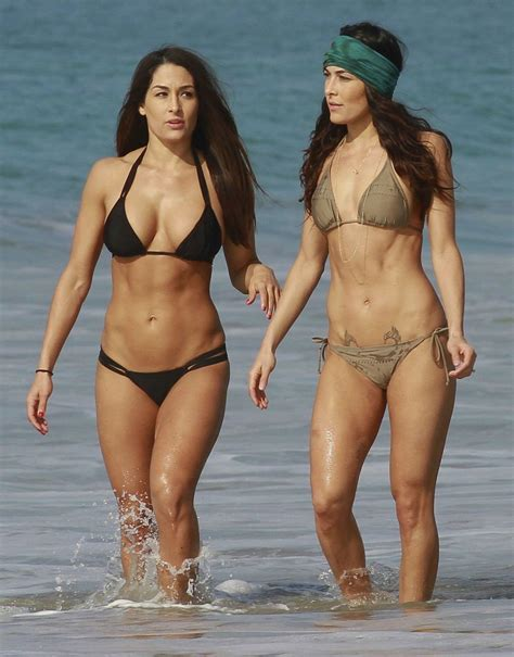 Los Angeles Hd Wallpapers The Bella Twins Wallpaper 78 Images