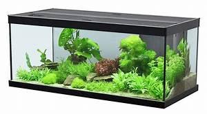 Aquarium Set Led : aquatlantis set aquarium style 100 led 2 0 124 liter ~ Watch28wear.com Haus und Dekorationen