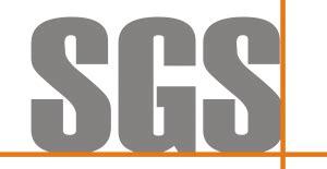 sgs investment  durham automotive dept secures position