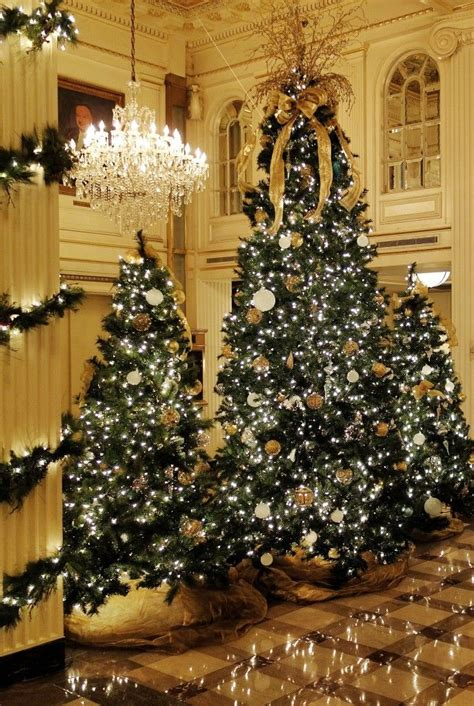 Top 5 Christmas Decorations In New Orleans  Beautiful, Christmas Trees And Tree Line