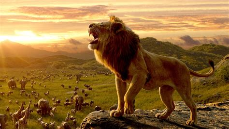 ver el rey lean pelicula completa en espanol latino