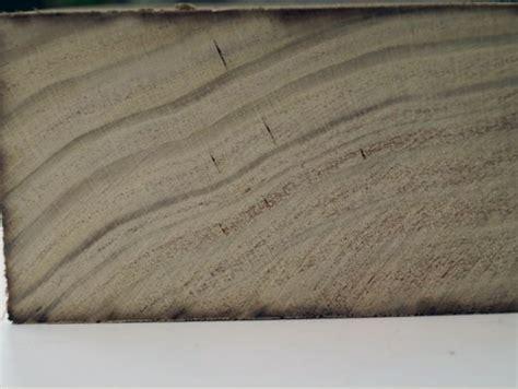 Accoya Holz Preis by Accoya Terrasse Erfahrung