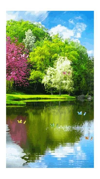 Nature Scenery Landscapes Scenes Park
