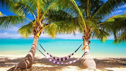Tropical Beach Hammock Uhd 4k Desktop Wallpapers