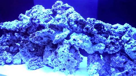 Aquascape Live Rock by 120 Gallon Saltwater Tank 2 Live Rock And Aquascaping