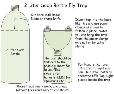 How To Trap House Flies 25 best ideas about fruit fly traps on fruit