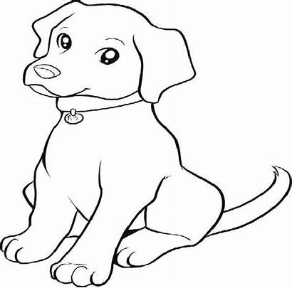 Lab Coloring Pages Puppy Dog Puppies Cartoon