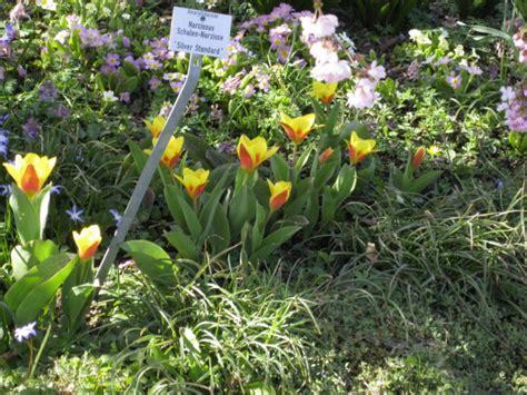 Botanischer Garten München Kontakt by Botanische Garten M 252 Nchen Nymphenburg