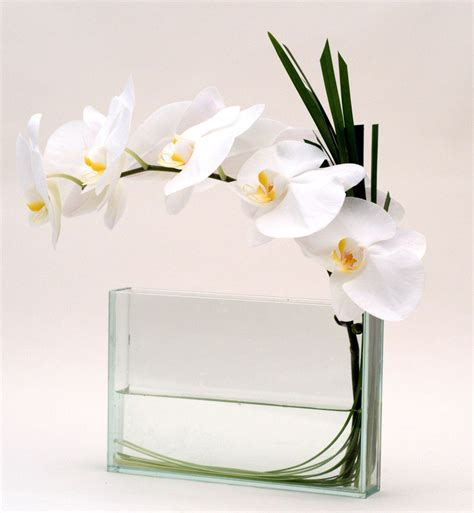 New Look Floral Design by Clean Look Orchids Corporate Flowers In Manhattan