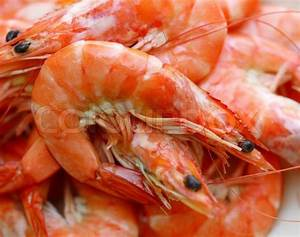 Fresh shrimp on a white | Stock Photo | Colourbox