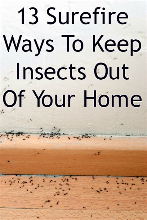 13 Surefire Natural Ways To Keep Insects Out Of Your Home