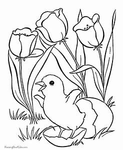 Free Download Tiger Lily Flower Coloring Pages Hd ...