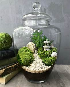The Urban Grow - Terrarium - Your No 1 source of