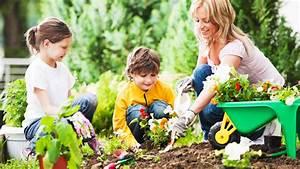 Darf Nachbar Meine Hecke Schneiden : b ume pflanzen hecke darf ich alles im garten pflanzen ~ Lizthompson.info Haus und Dekorationen