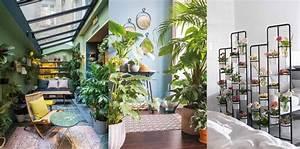 Plantes Exotiques D Intérieur : plantes d int rieur la nouvelle tendance d co femme actuelle le mag ~ Melissatoandfro.com Idées de Décoration